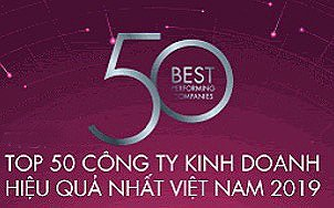 Vietnam Enterprise Top 50 Performer